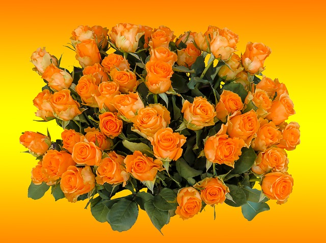 Bouquet, Birthday Bouquet, Flowers, Rose, Strauss