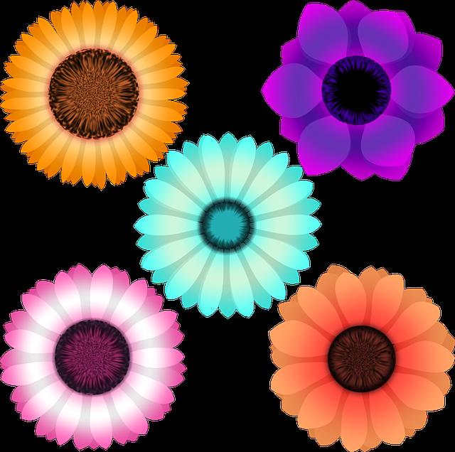 Flowers, Daisy, Sunflower, Gerbera, Clematis, Dahlia