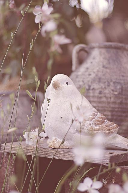 Autumn, Bird, Jugs, Flowers, Tonvogel, Cute