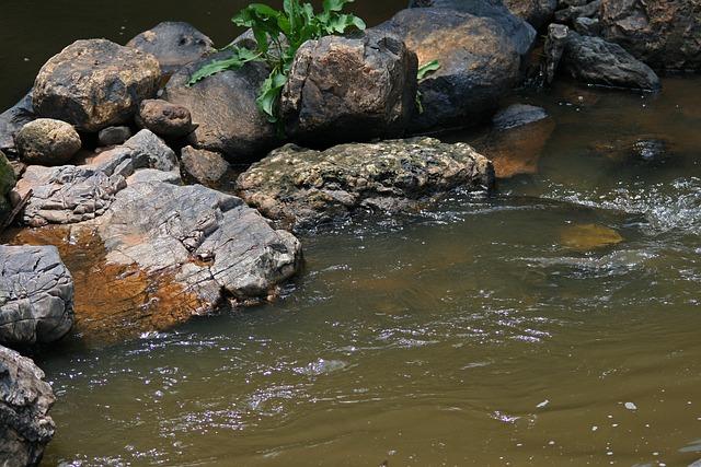 Rocks In Stream, Stream, Water, Brook, Spring, Flowing