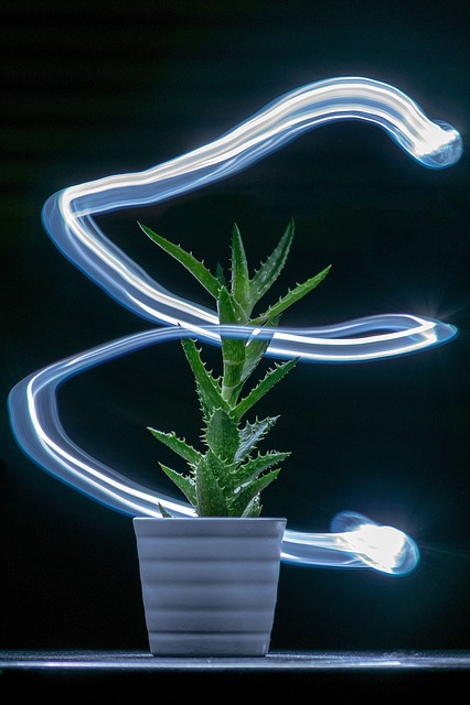 Desktop, Fluorescent, Illuminated, Light, Lamp