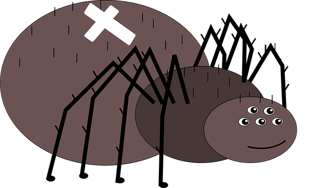 Crusader, Spider, Animal, Net, Fly, Forest, Nature