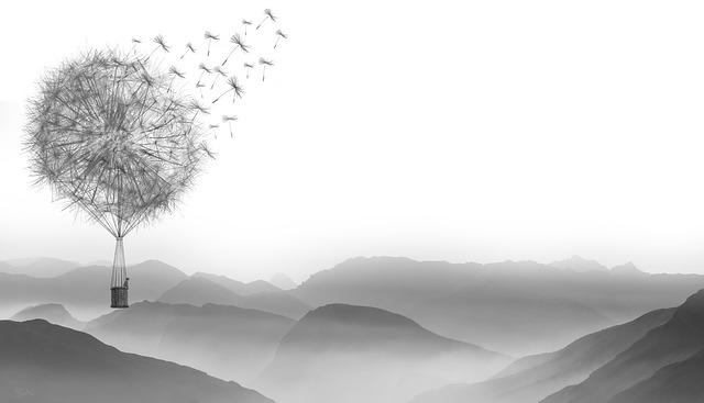 Dandelion, Wind, Flying, Nature, Plant, Sky
