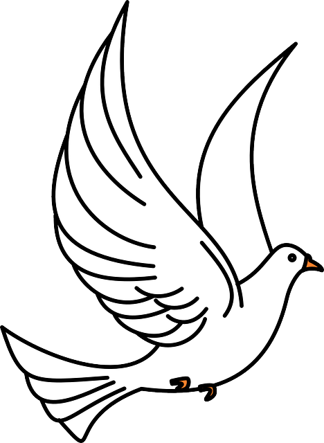 Dove, Birds, Flying, Flight, Wings, White, Peace