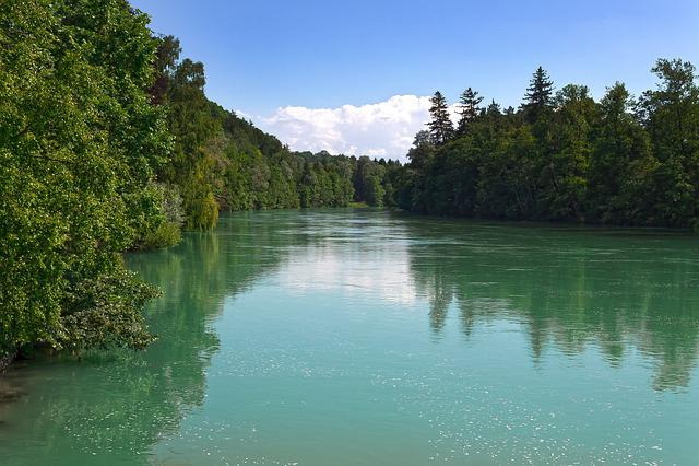 River, Riparian Zone, Foam, Lech, Forest, Bank