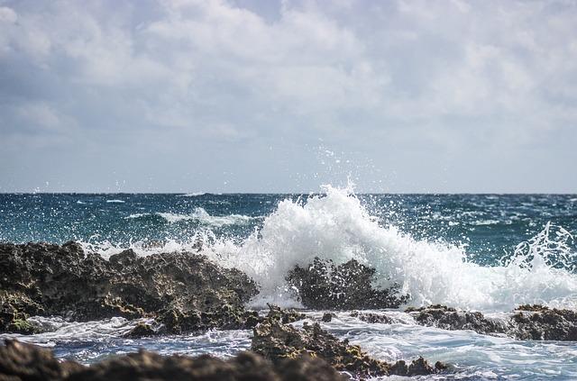 Water, Sea, Wave, Surf, Ocean, Seashore, Splash, Foam