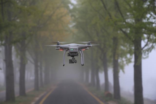 Ginkgo, Fog, The Drones, Landscape, Plane, Helicopter