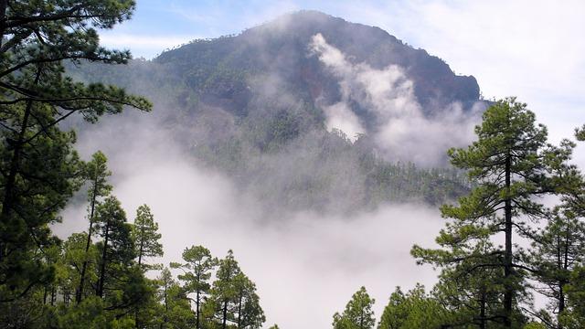 La Palma, Landscape, Fog