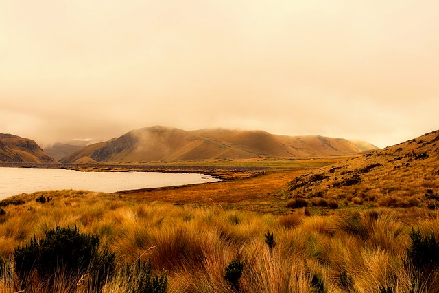 Ecuador, Landscape, Sunrise, Morning, Fog, Lake