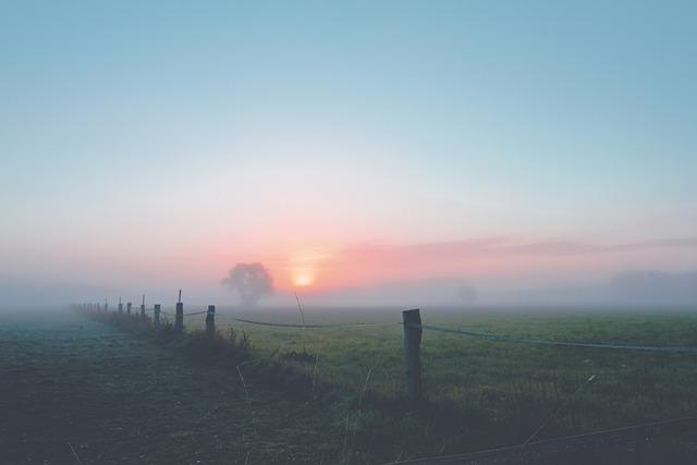 Fog, Dawn, Landscape, Morgenstimmung, Mood