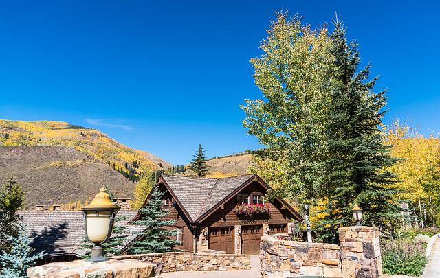 Vail, Colorado, Mountains, Foliage, Nature, Usa, Travel