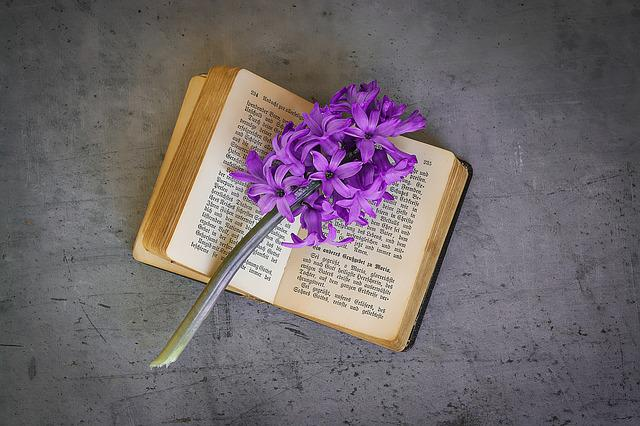 Book, Old, Book Pages, Font, Old Book, Used, Flower