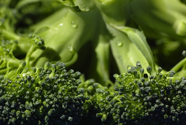 Broccoli, Organic, Food, Vegetable, Green