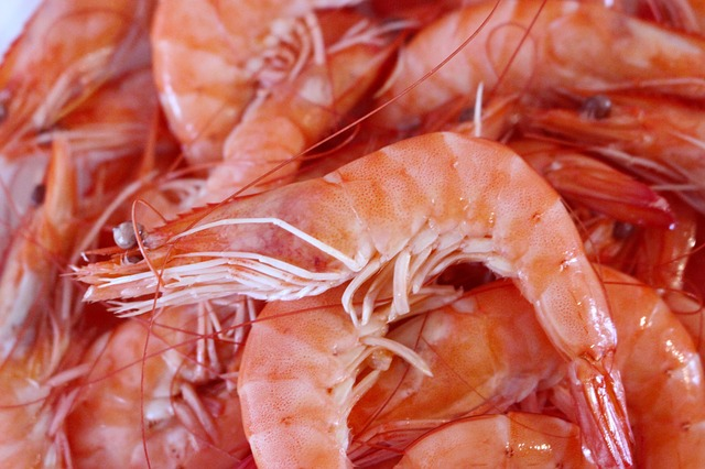 Shrimp, Seafood, Crustaceans, Sea, Food, Kitchen
