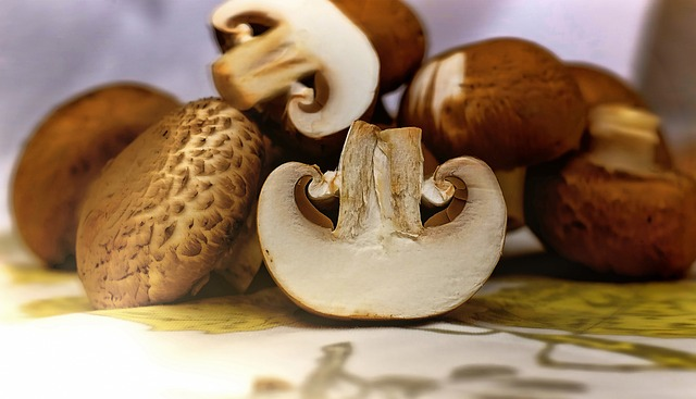 Mushrooms, Brown, Food, Edible