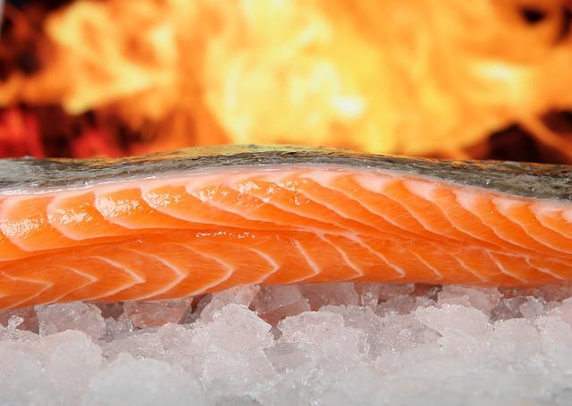 Salmon, Fish, Food, On Ice, Grilled, Bbq, Barbecue