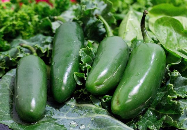 Vegetable, Food, Flora, Garden, Leaf