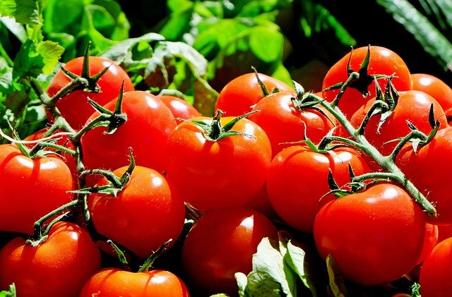 Tomatoes, Red, Food, Frisch, Market