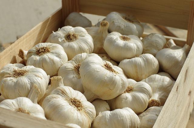 Garlic, Garlic White, Food, Succulent, Agriculture