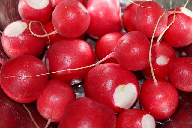 Radish, Vegetables, Red Balls, Eating, Food, Healthy