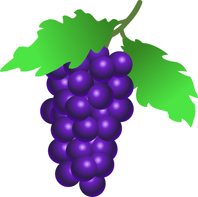 Grapes, Fruit, Food, Wine, Plant, Vine, Leaves, Organic