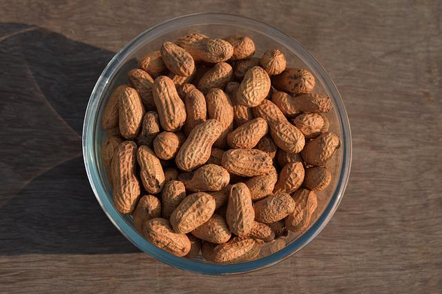 Food, Refreshment, Seed, Healthy, Nut, Legume