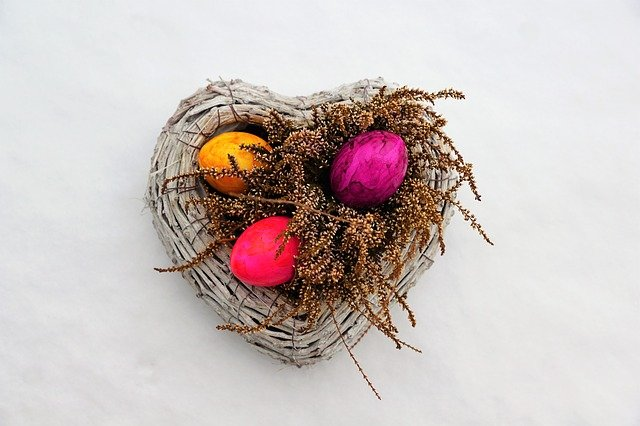 Nature, Background, Close, Nest, Color, Food, Egg