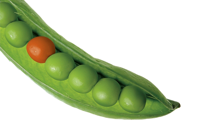 Peas, Pea Pod, Vegetables, Green, Food, Pod, Series