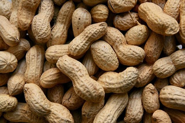 Peanuts, Nuts, Food