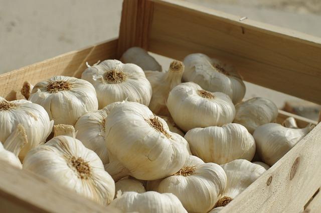 Garlic, Food, Vegetable, Garlic Grown, Power, Culture