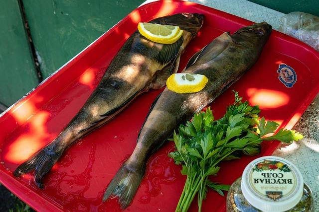 Fish, Lingcod, Preparation, Smoked Fish, Food, Dish