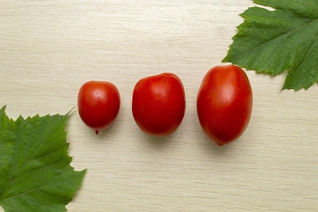 Food, Health, Healthy, Vegetable, Freshness, Nutrition