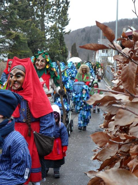 Fools Guild Ulm, Carnival, Fasnet, Haes, Mask