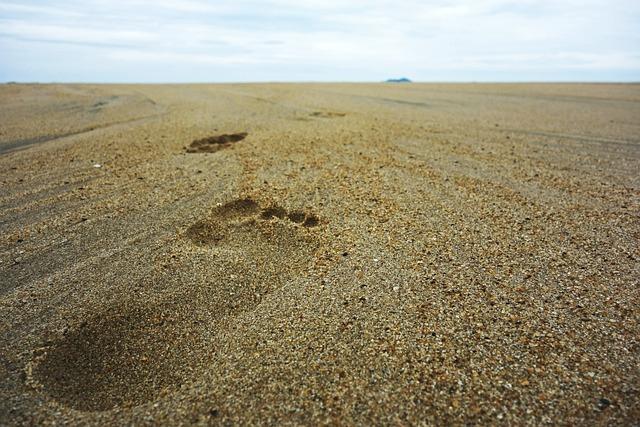 Footsteps, Sand, Beach, Foot, Print, Vacation, Summer