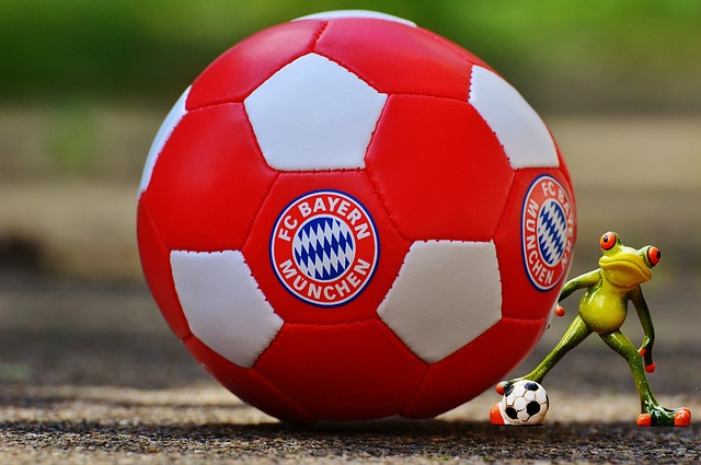 Bayern Munich, Frog, Football Club, Bavaria, Football