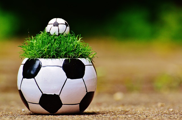European Championship, Football, 2016, Grass, France