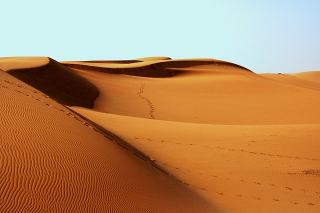 Desert, Africa, Bedouin, Footprints, Sand, Arid, Dry
