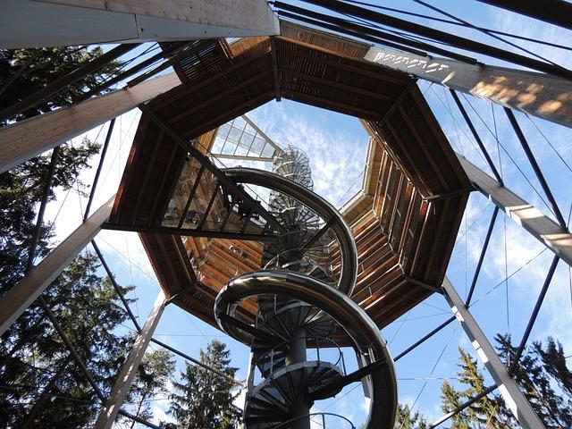 Trail Treetops, Trip, Slide, Activities, For Children