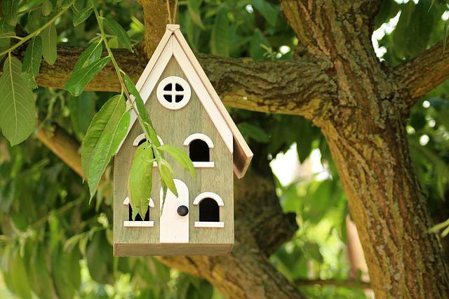 Birdhouse, Breeding Shed, For The Birds, Shed, Wooden