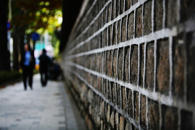 Seoul, Forbidden City, Stone Will