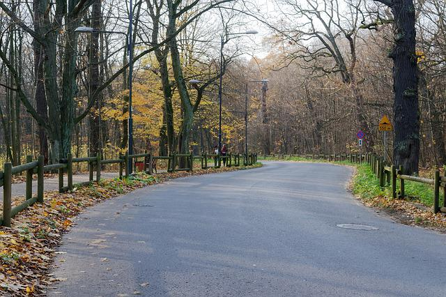 Landscape, Road, Alley, Forest, Fence, Wood, Autumn