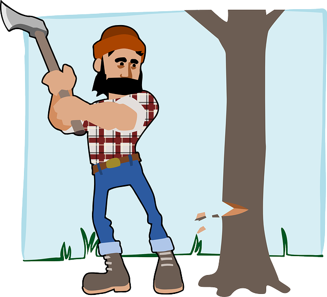 Lumber, Lumberjack, Axe, Beard, Forest, Job, Profession