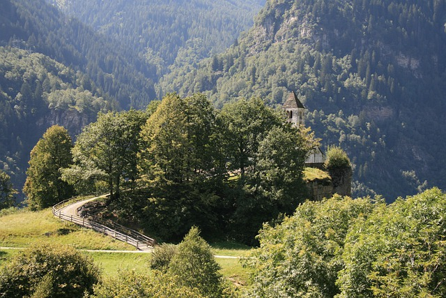 Church, Ticino, Bergdorf, Away, Trees, Forest, Green