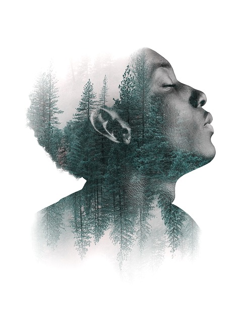 Man, Portrait, Face, Human, Forest, Trees, Art