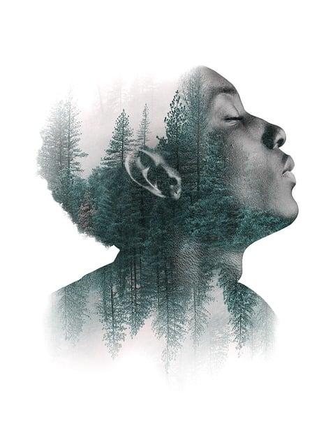 Man, Portrait, Face, Human, Forest, Trees, Art