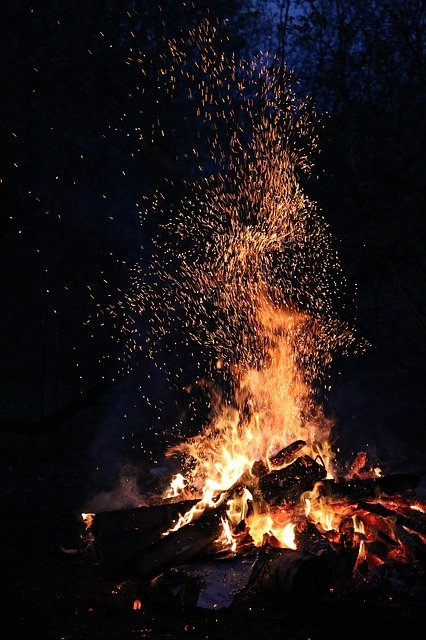 Night, Forest, Koster, Flame, Spark, Fever, Fire