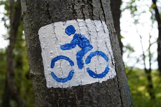Bike, Excursion, Coach, Hiking Trail, Forest