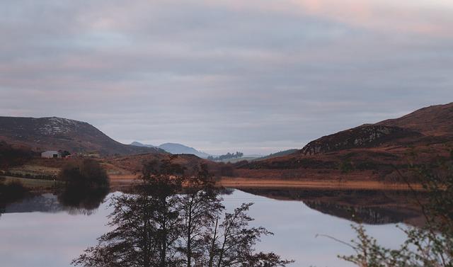 Calm, Forest, Ireland, Isolated, Lake, Landscape