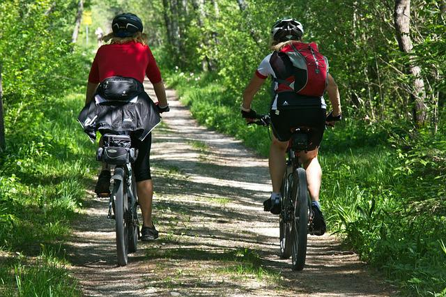 Cycling, Leisure, Recovery, Forest, Cyclists, Nature