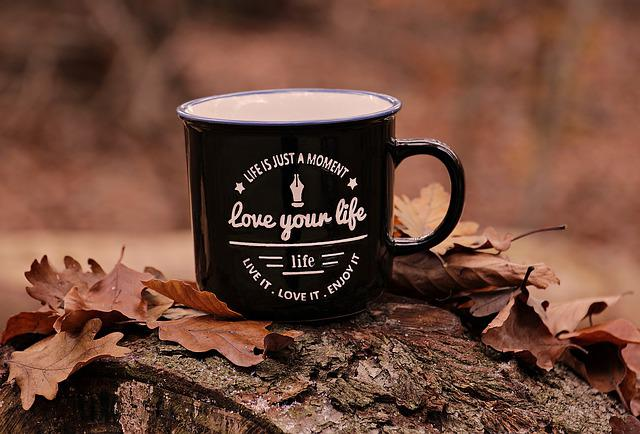 Forest, Autumn, Cup, Love Your Life, Motto, Leaves